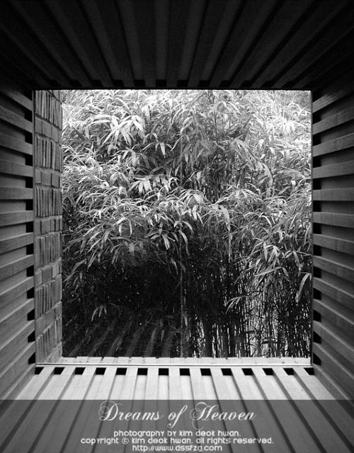 20080614 풍경이 있는 창